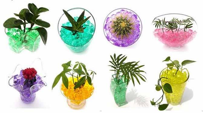 грунт для цветов шарики